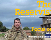 The Reservist