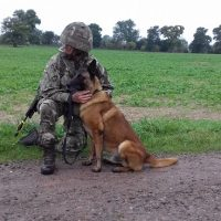 MWD On EX and handler