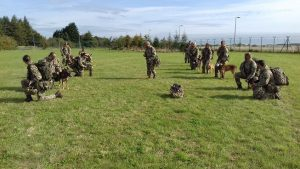 Troops and MWD waiting for Chinook